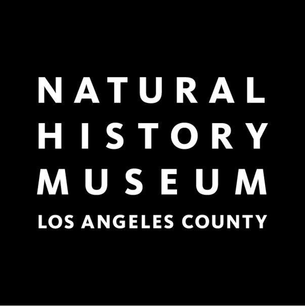 Natural History Museum Summer Camp Los Angeles